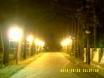 Taipei Botanical Garden = 台北植物園