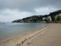 Beach at Oriental Bay