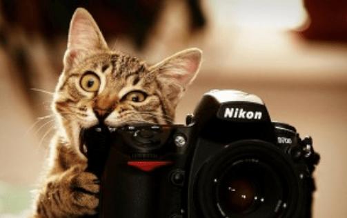 Как защитить от сглаза свою фотографию из? Белла Авеб