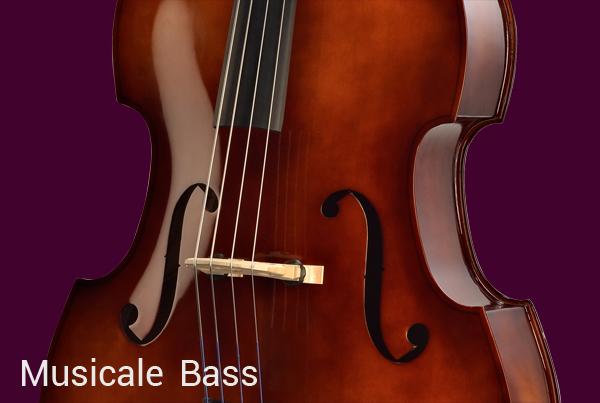 Bellafina Musicale Bass
