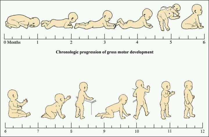 Етапи в двигателното развитието на бебето до 1 годинка - Bellamie