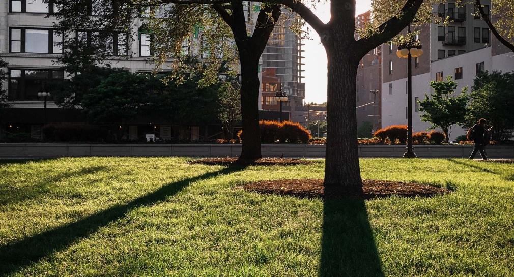 Chicago park shadows