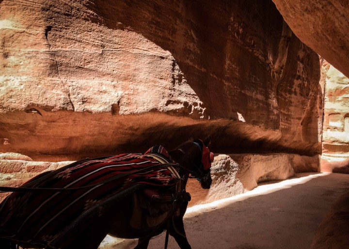 Triple kissing in ancient Petra and Wadi Rum