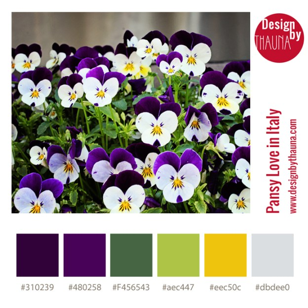 Pansy Love in Italy - Color Palette