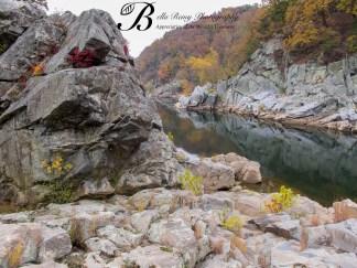 Along the Potomac River