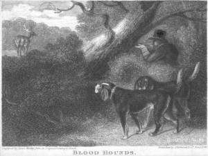 hounds of hubert engraving 1826