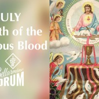 July 6th — Types of the Precious Blood:  (3) The Peace-Offering.