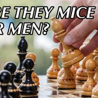 Are They Mice or Men?