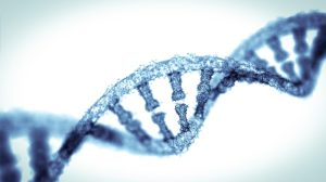 DNA 300x168 - BCLA Offers New Paths In Health Studies