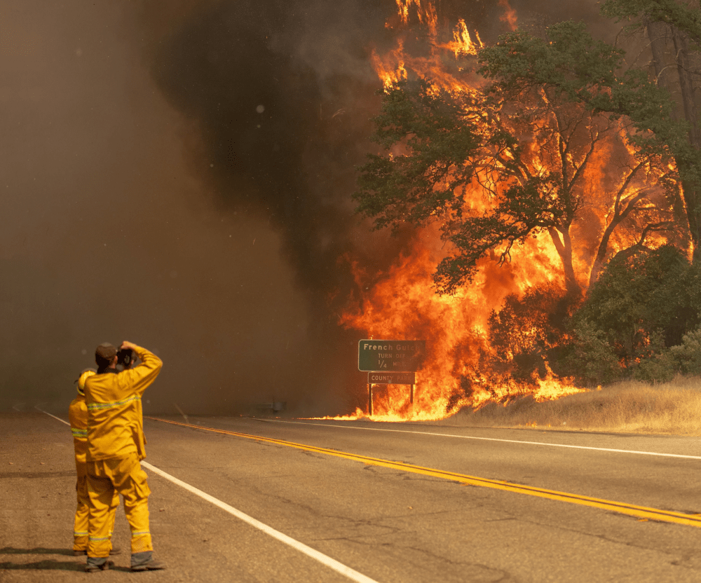 Firemen in front of wildfire