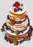 fruity naked cake