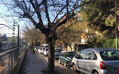 La inestabilitat desapareix després d'un cap de setmana plujós a Bellaterra