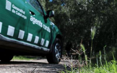 Intervenen un caçador amb una escopeta a la carretera de Bellaterra