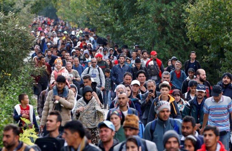 Refugiats   Cedida