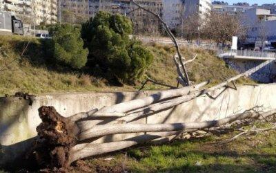 El Vallès Occidental és la comarca més afectada per les fortes ventades