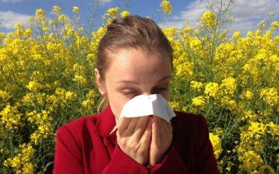 Els alts nivells de pol·len poden dificultar la respiració als al·lergics