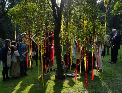1. Medford Williams credit - Wishing Tree 1