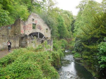 The beautful Jesmond Dene is a wooded park in the heart of Newcastle and a must see place for visiting tourist and locals alike