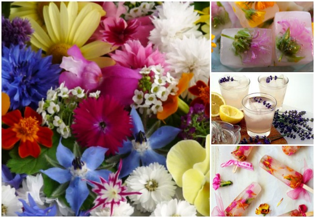 edible flowers main