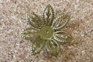 Excellent centre de fleurs, 25mm diamètre