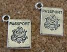 Passeport argenté, 15x10mm excluant l'anneau
