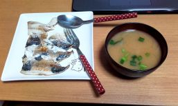 First attempt of homemade miso soup - I had no nori so I used green onion and parsley (foreigner fail!)