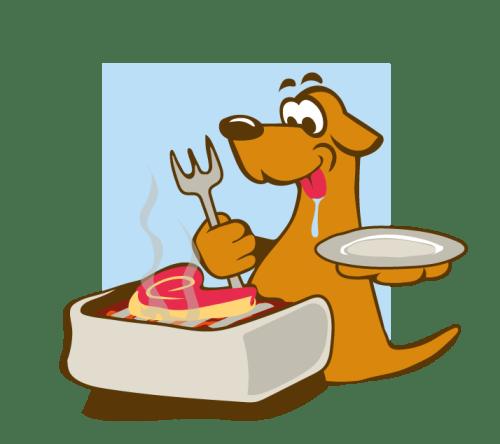 Futter & Nahrungsergänzung