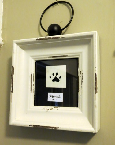 Framed Animal Paw Prints - Mynah's Paw - Featured Image, Post Image