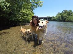 Happy Mother's Day - Donte', Stella, and me at the river (1)
