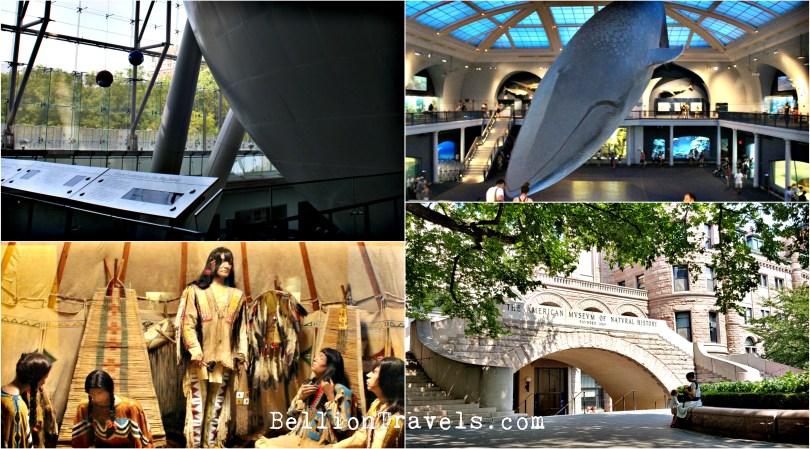 naturalmuseum2