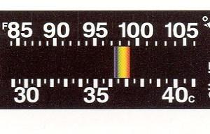 CliniTemp Moving Line Temperature Indicators
