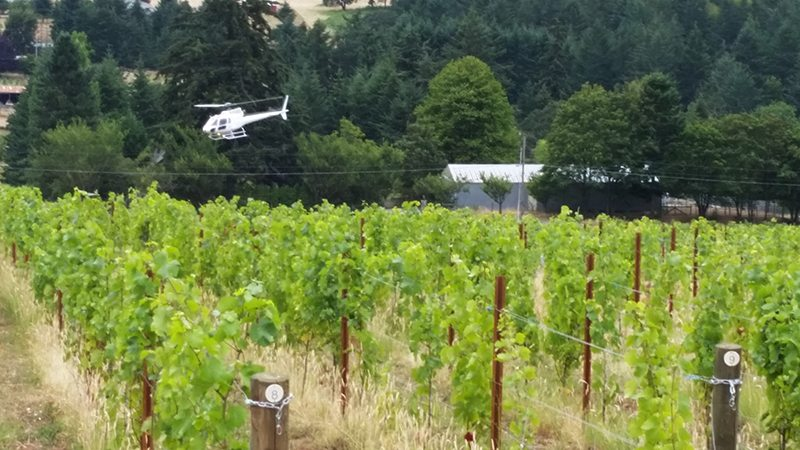 The helicopter tour comes in for a landing.