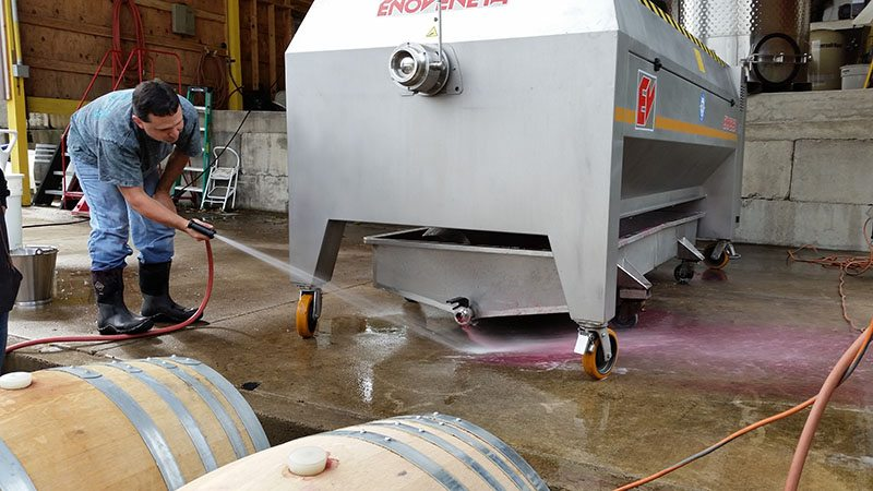 Pressing Bells Up's pinot noirs, October 18, 2016.