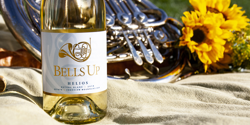 Photo of a bottle of white wine in front of a French Horn and Sunflowers