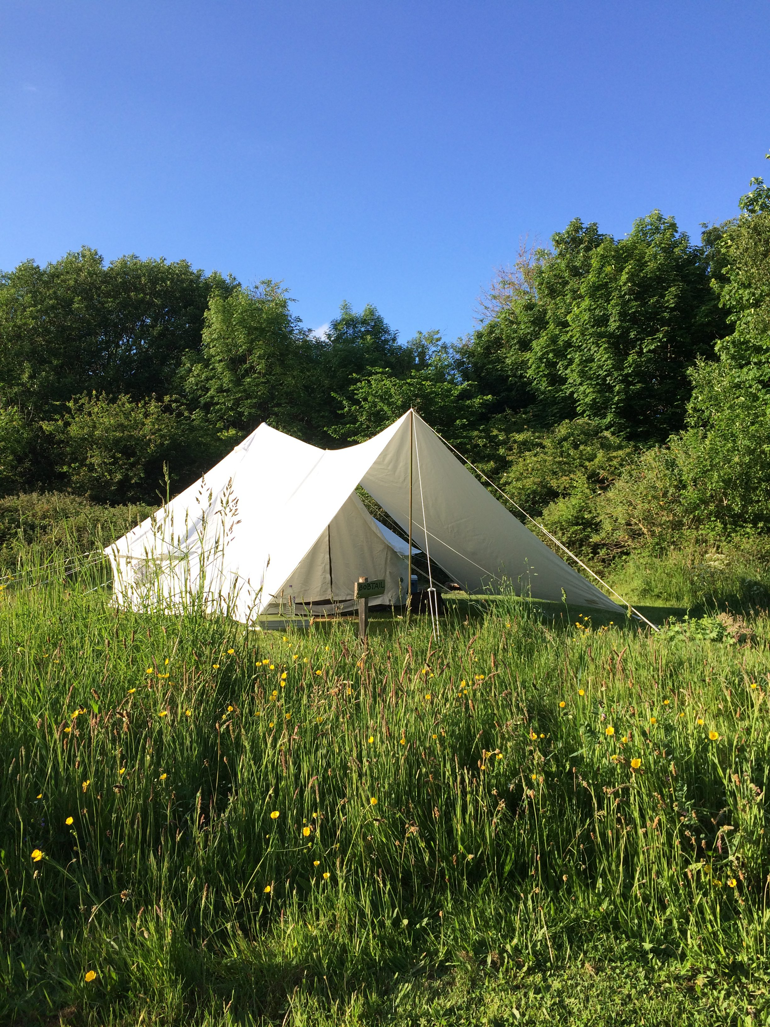 Bell tent with canopy in meadow