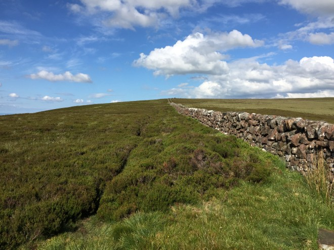 Stone wall and track, Pentland Hills