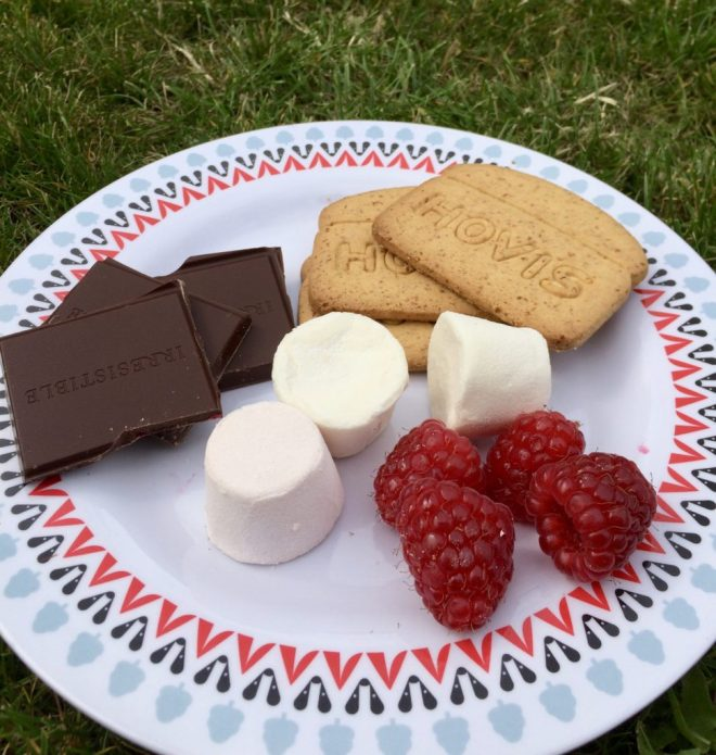 S'more ingredients on a plate