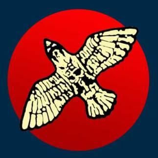 red-moon-bird