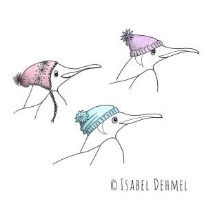 Der Schlittschuh fahrende Pinguin (Mützenstudie) - Illustration von Isabel Dehmel