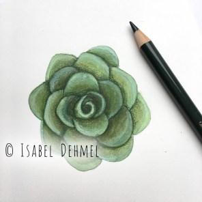 isabeldehmel-succulent-love-i1