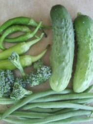 cayenne, banana pepper, broccoli, beans, cucumber