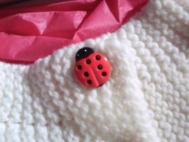 ladybug button! i fell in love with these at the store