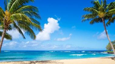 MW-DV038_Hawaii_20150924140655_ZH