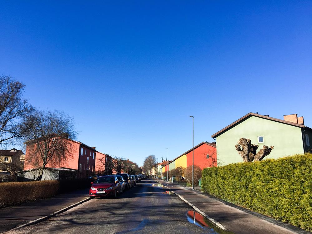 sunshine-walk