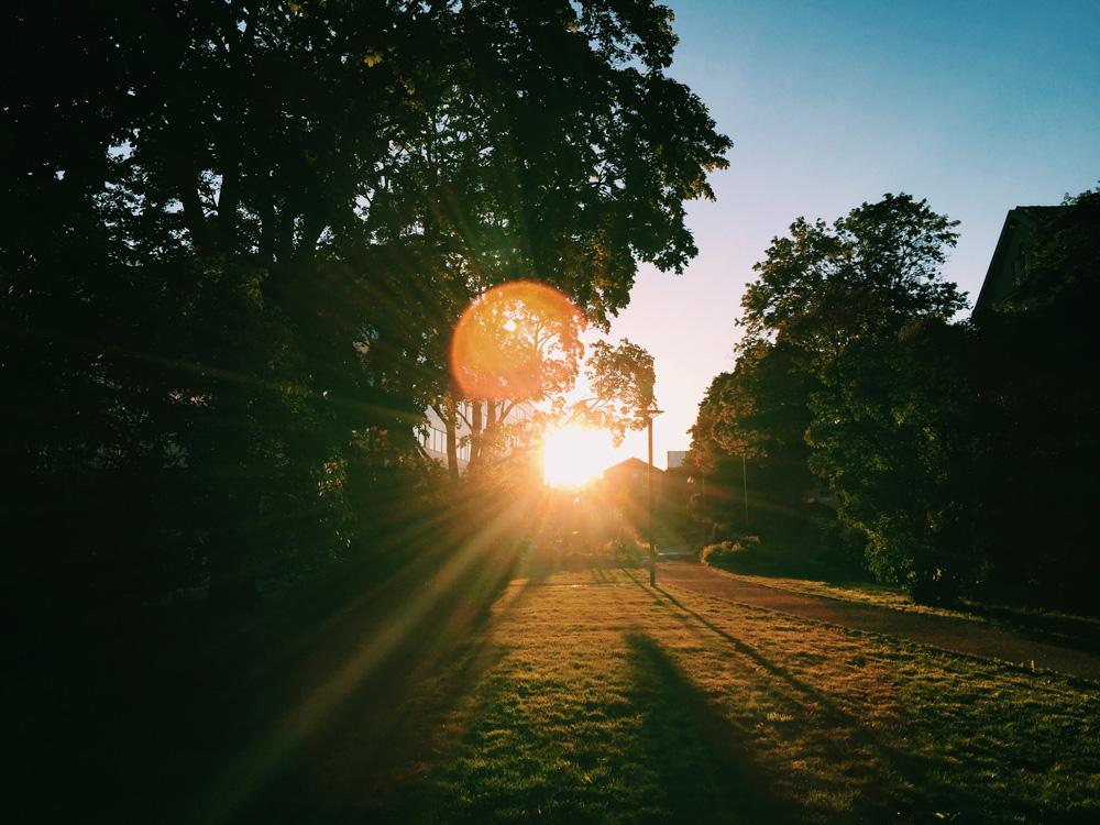 neighborhood-uppsala-sunset-walk.-3-sun-flares