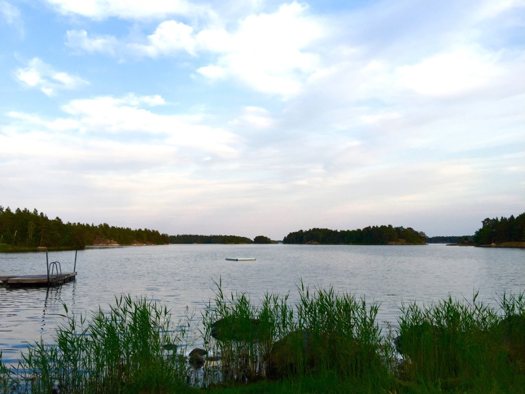 water-reeds-skeppsgarden
