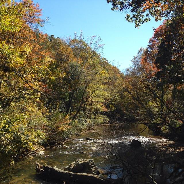 river autumn asheville