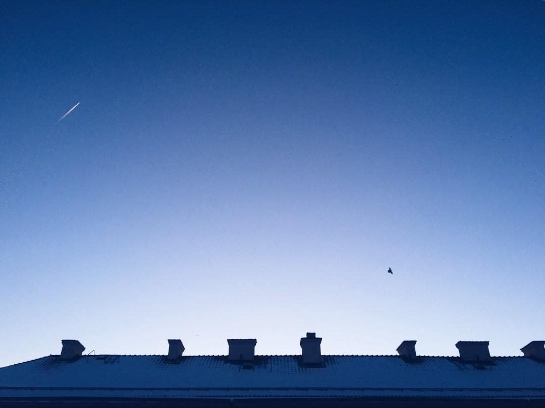sky airplane bird