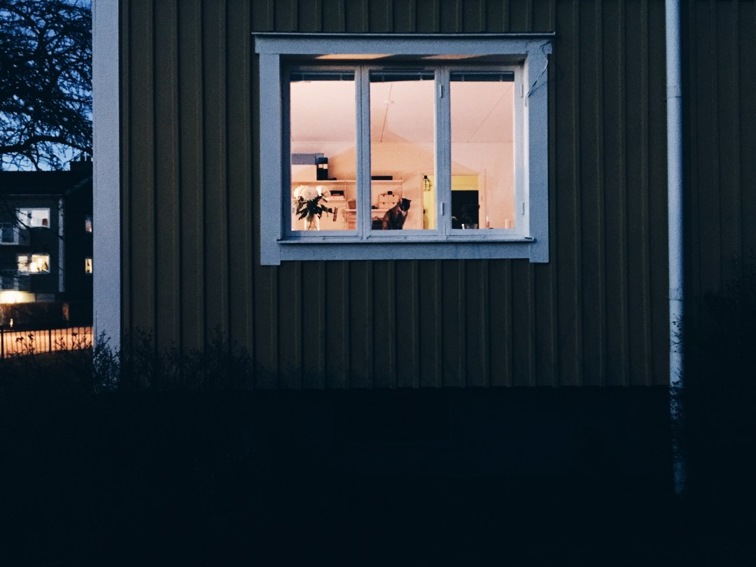 night home backyard