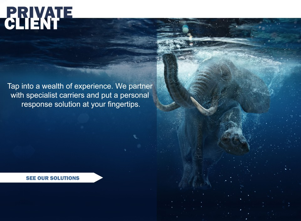 Elephant in Water TEXT 4.1.